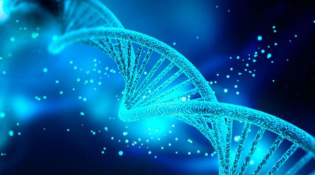 O risco da genética na doença de Alzheimer