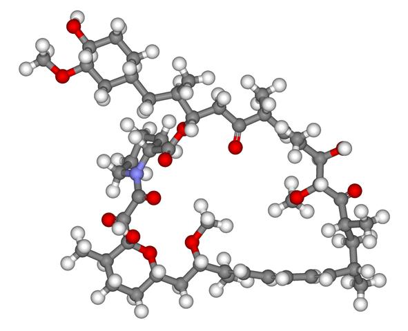 A rapamicina é a nova esperança contra a doença de Alzheimer